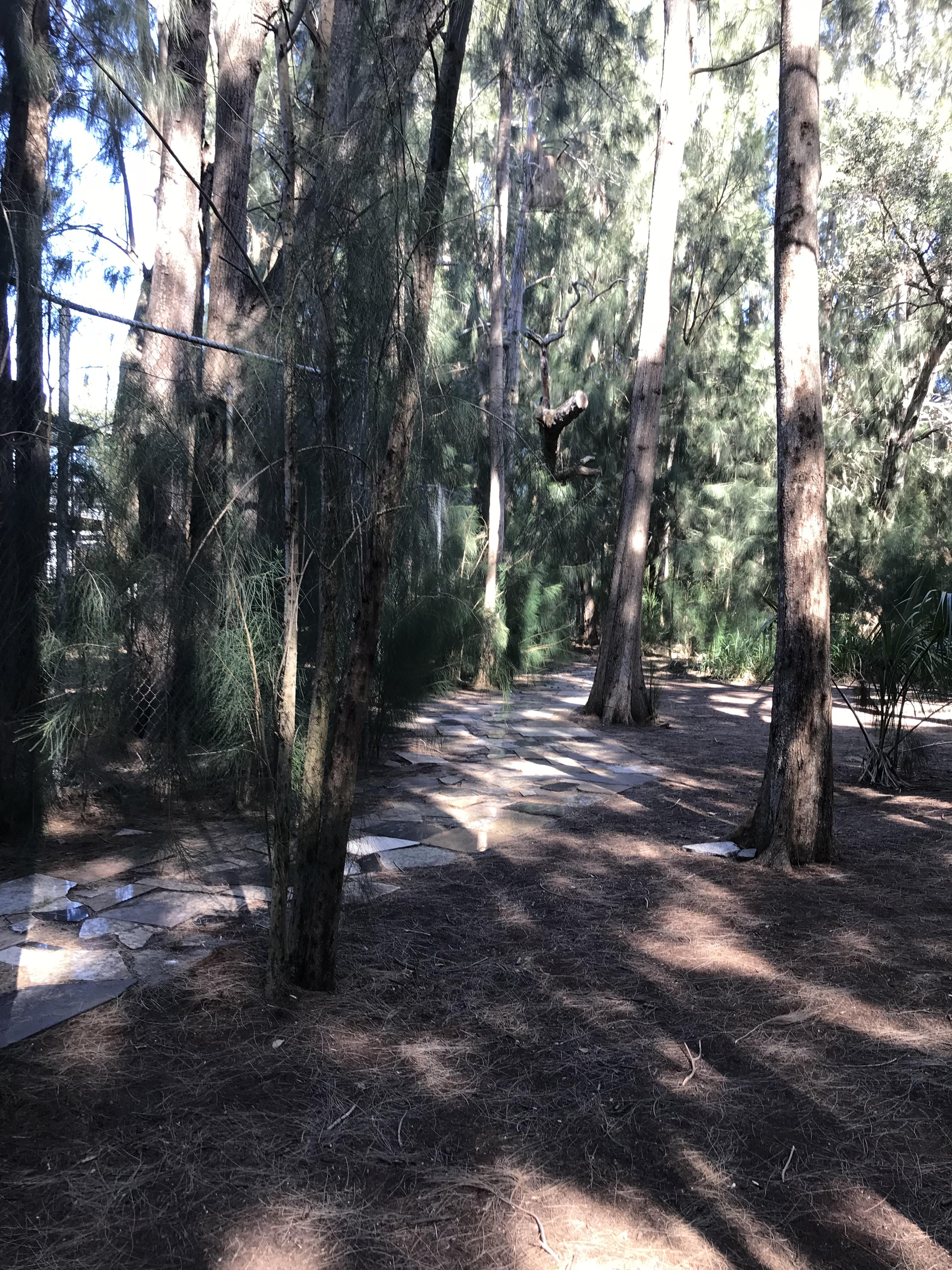 Pinellas Trail Suncoast Primate Sanctuary