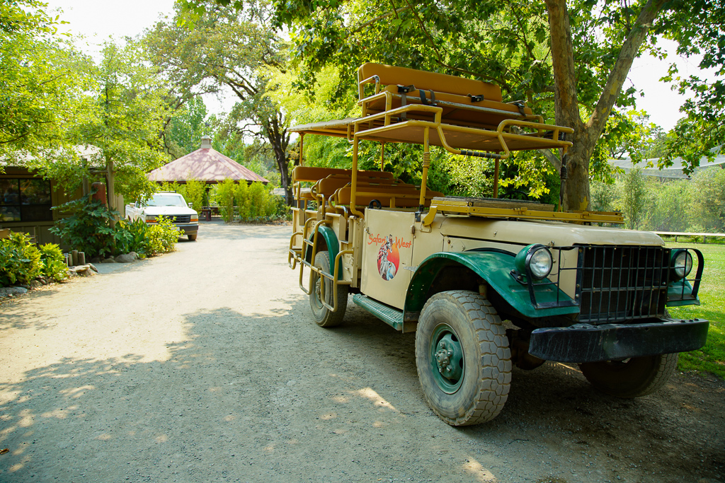 Safari West Jeep